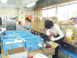 Food Drive for Kumamoto!