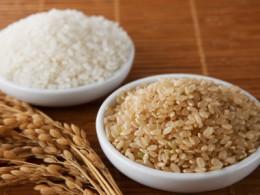 白米と玄米と稲